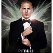 Pitbull / Питбуль  Официальный сайт Концертного Агента / Заказать / Пригласить на корпоратив или свадьбу, на день рождения, юбилей компании в ресторан или на частную вечеринку, в клуб - казино на презентацию или съемку в рекламном ролике