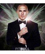 Pitbull / Питбуль